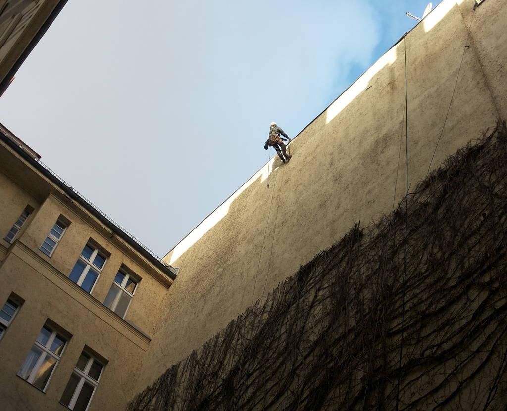 Fassadengrünschnitt